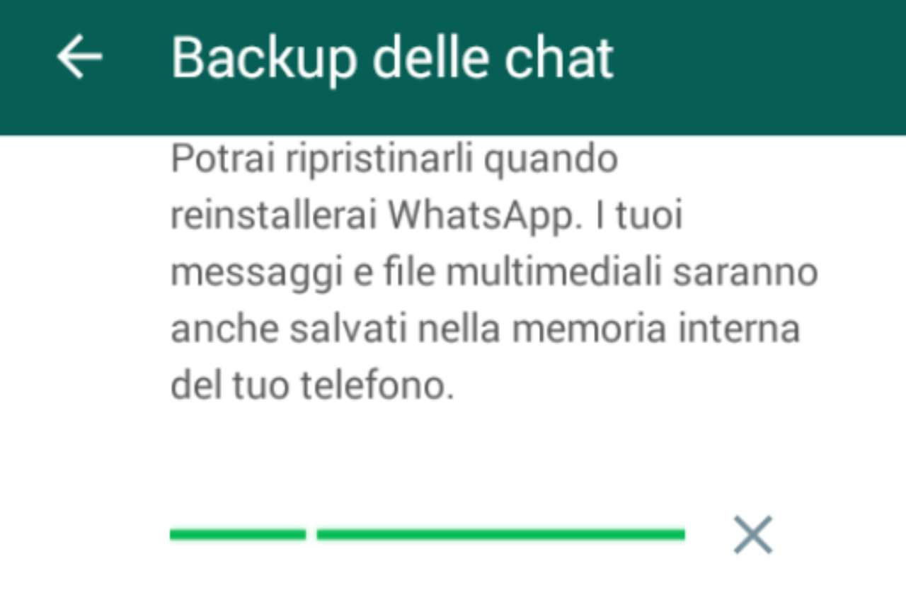 WhatsApp Backup trucchi