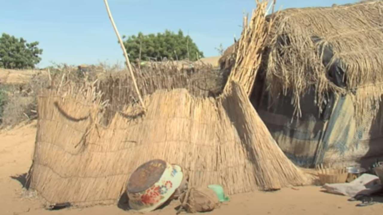 Niger incendio