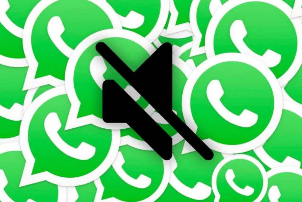 WhatsApp disattivare notifiche