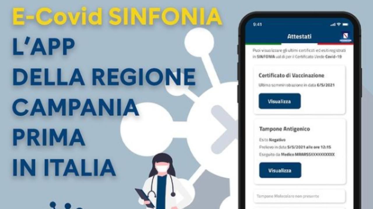 app Campania